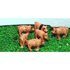 A69p Painted 6 x Pigs N Scale 1:148