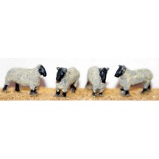 F58p Painted 4 Sheep OO Scale 1:76 Painted Model