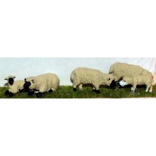 L20p Painted 3 Ass Sheep & 3 lambs O Scale 1:43
