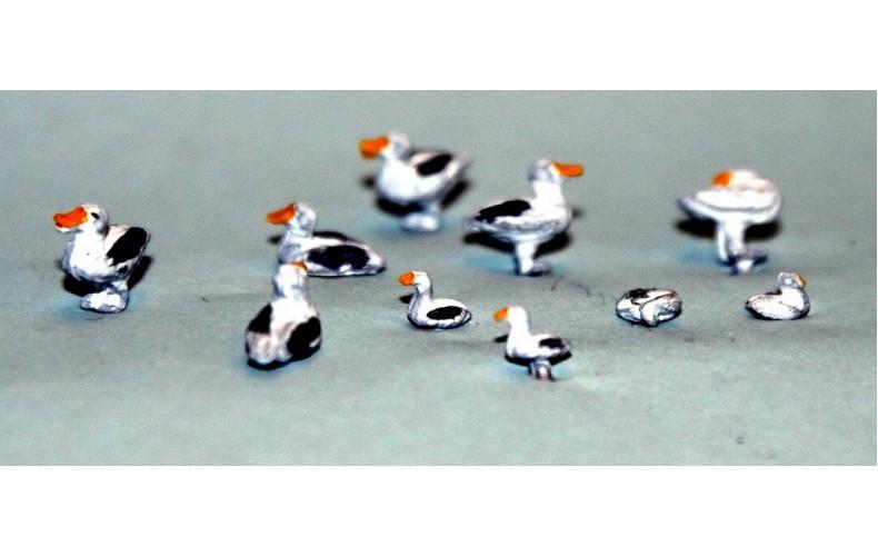 TT11 6 large 4 small standing Seagulls UNPAINTED TT Scale