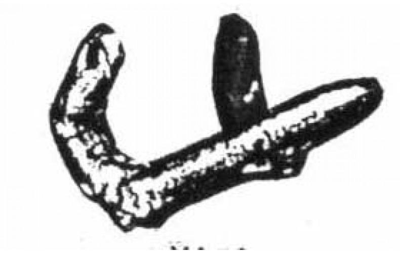 xa61 double arm & artillery shell (54mm Scale)